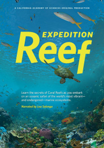 Expedition Reef,