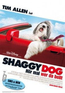 The Shaggy Dog, Brian Robbins