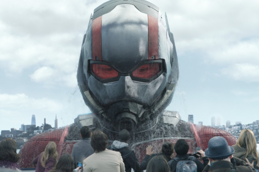 /db_data/movies/antman2/scen/l/410_06_-_Scene_Picture.jpg