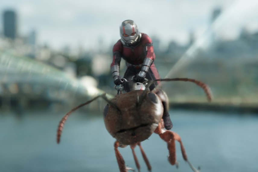 /db_data/movies/antman2/scen/l/410_22_-_Ant-Man_Paul_Rudd.jpg