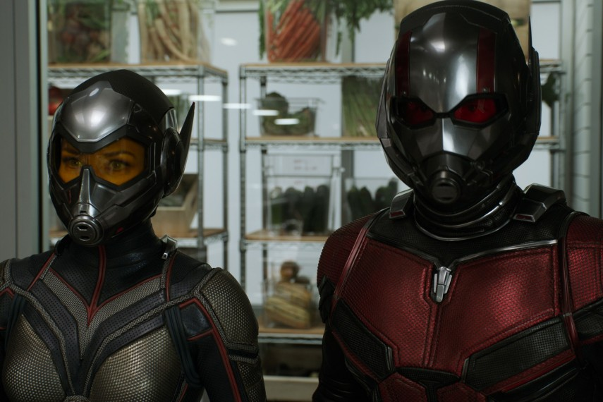 /db_data/movies/antman2/scen/l/410_46_-_The_Wasp_Evangeline_L.jpg