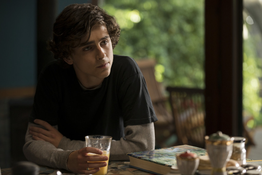 /db_data/movies/beautifulboy/scen/l/410_08_-_Nic_Timothee_Chalamet.jpg
