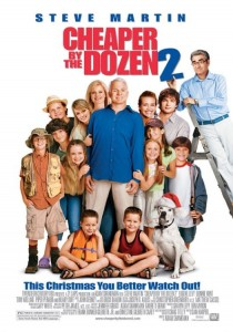 Cheaper by the Dozen 2, Adam Shankman