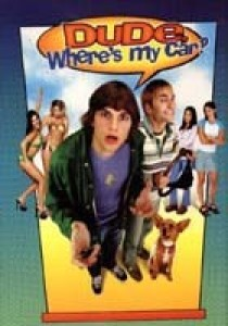 Dude, Where's My Car?, Danny Leiner
