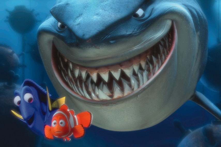 /db_data/movies/findingnemo/scen/l/FNC-102_rgb.jpg