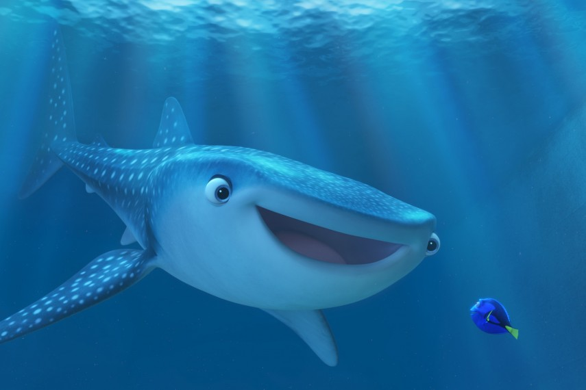 /db_data/movies/findingnemo2/scen/l/410_03_-_Destiny_Dory.jpg
