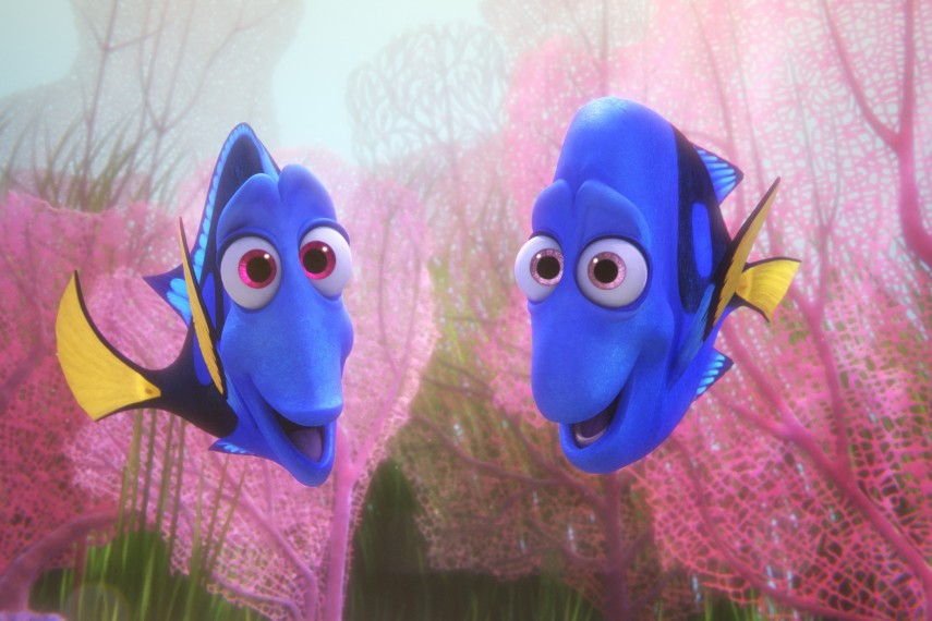 /db_data/movies/findingnemo2/scen/l/410_09_-_Jenny_Charlie.jpg