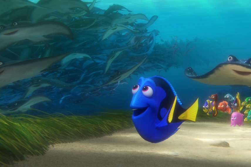 /db_data/movies/findingnemo2/scen/l/410_10_-_Dory.jpg