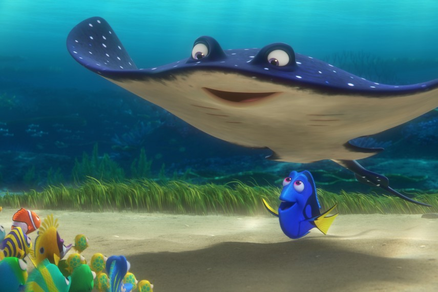 /db_data/movies/findingnemo2/scen/l/410_11_-_Mr._Ray_Dory.jpg