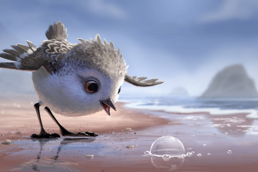 /db_data/movies/findingnemo2/scen/l/425_02_-_Shortmovie_PIPER_Concept_Art.jpg