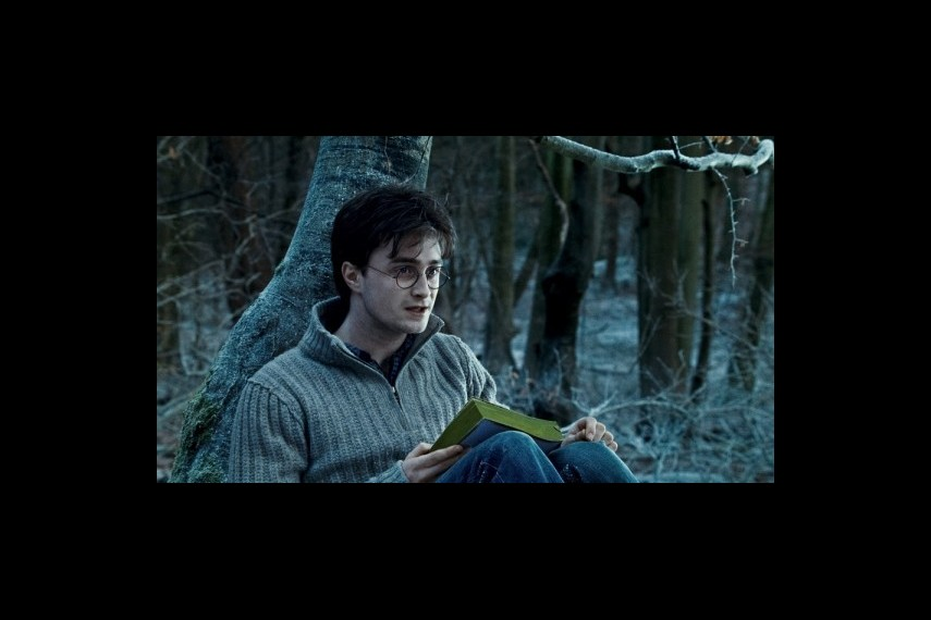 /db_data/movies/harrypotter7_1/scen/l/1-Picture145-08f.jpg