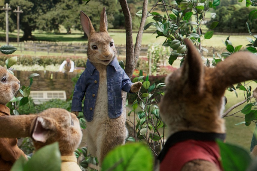 /db_data/movies/peterrabbit/scen/l/Peter-Rabbit_22.jpg