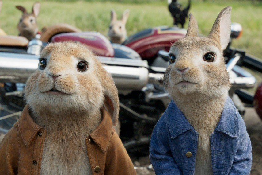 /db_data/movies/peterrabbit/scen/l/Peter-Rabbit_25.jpg