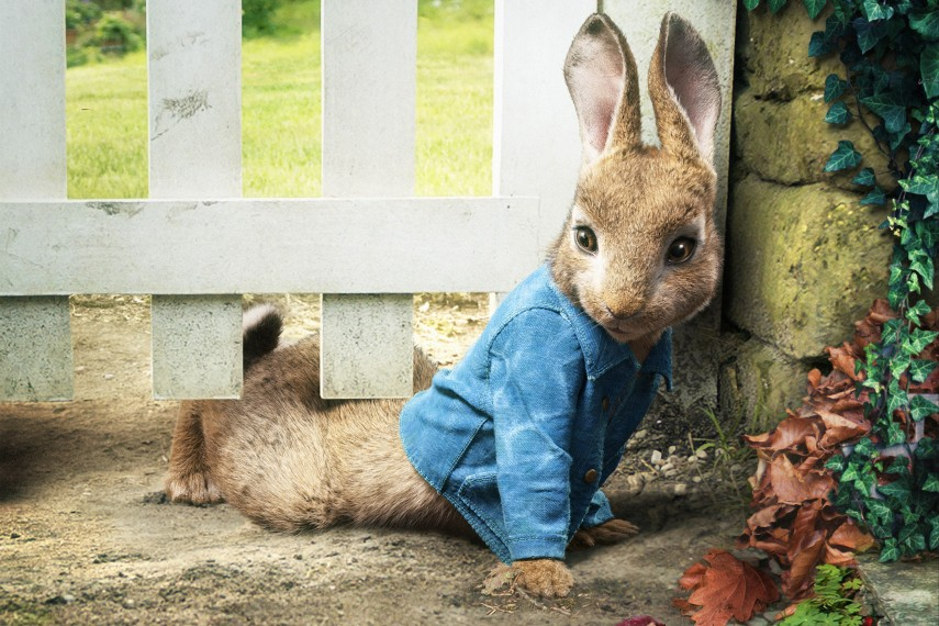 /db_data/movies/peterrabbit/scen/l/Peter_Rabbit_05.jpg
