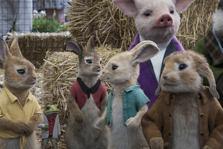 PeterRabbit2_13.jpg