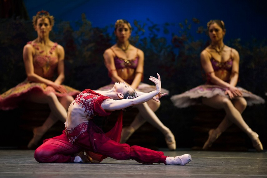 /db_data/movies/royaloperahouselabayadere/scen/l/8630186063_96dccba830_b.jpg