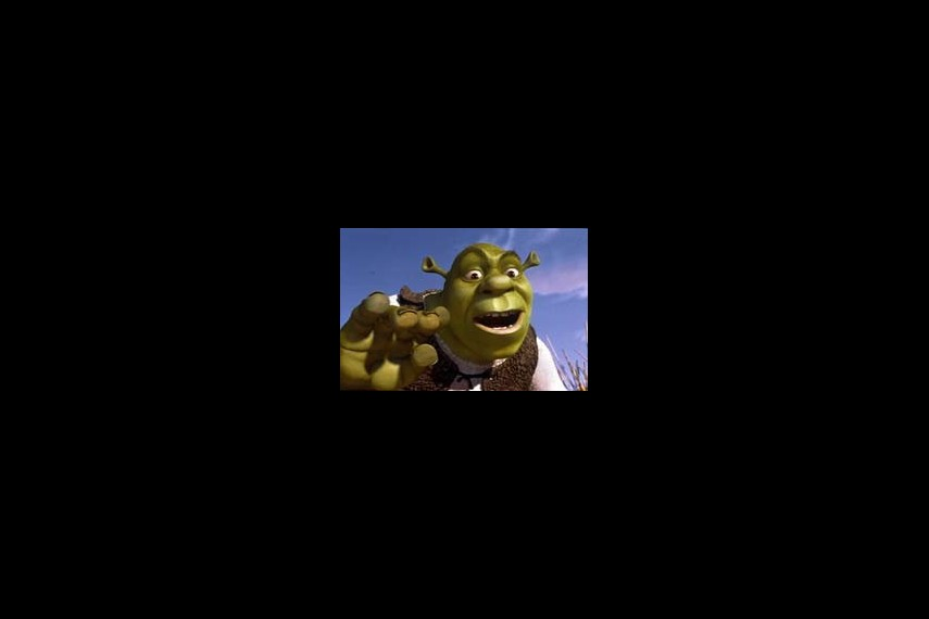 /db_data/movies/shrek/scen/l/ki_img1.jpg